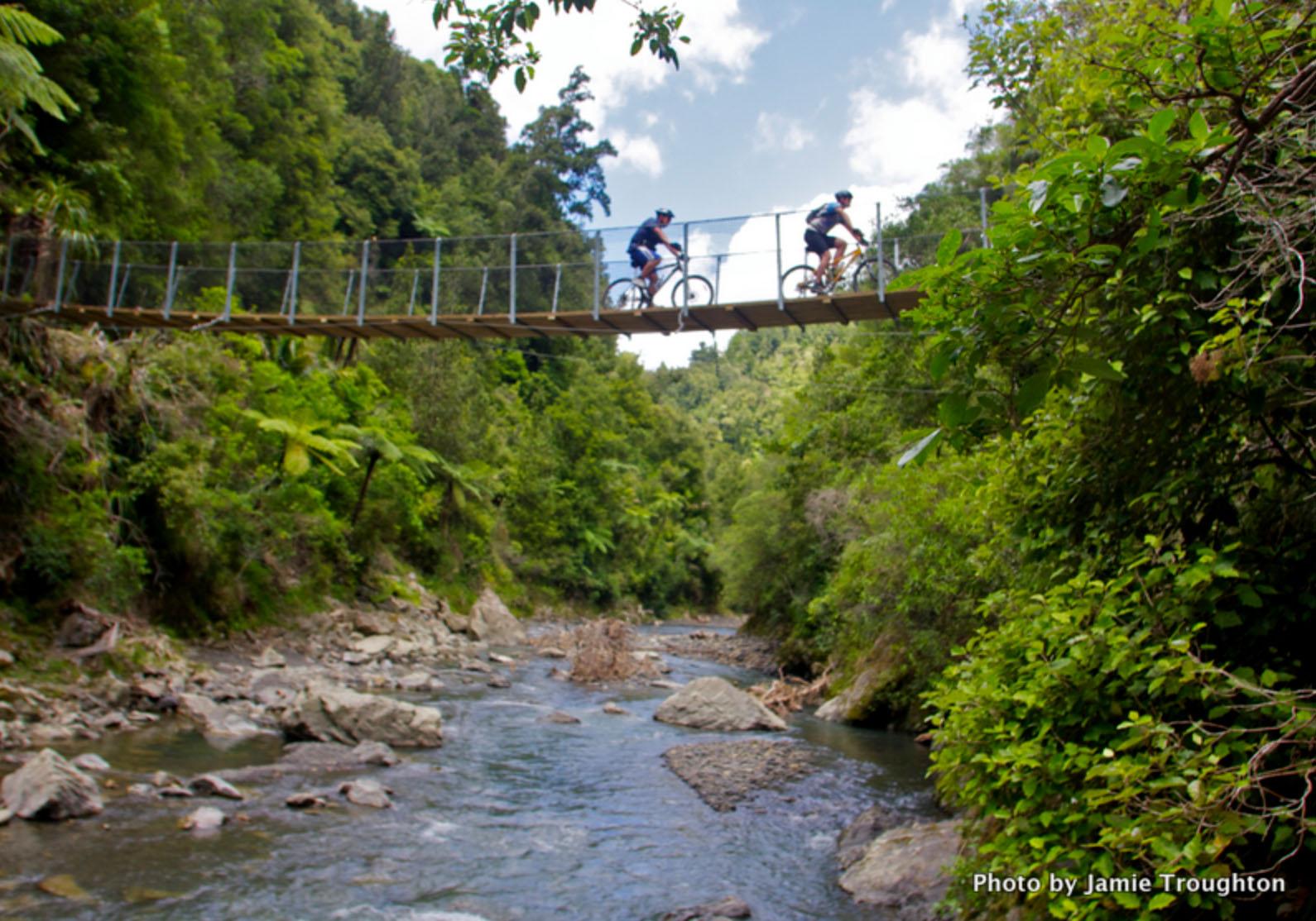 Motu Trails - 5.jpg