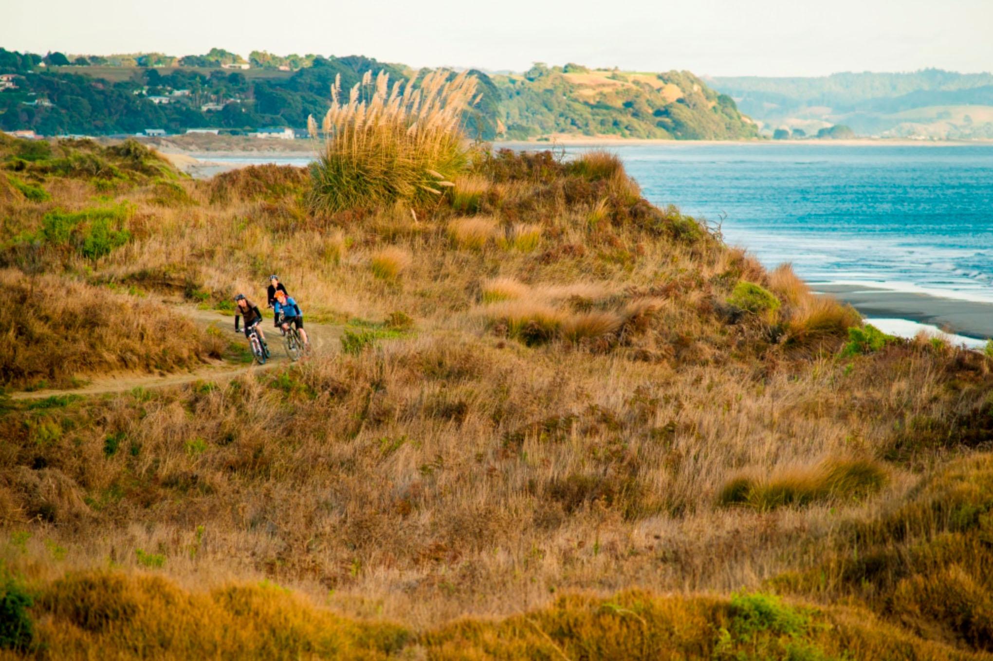 Motu Trails - 6.jpg