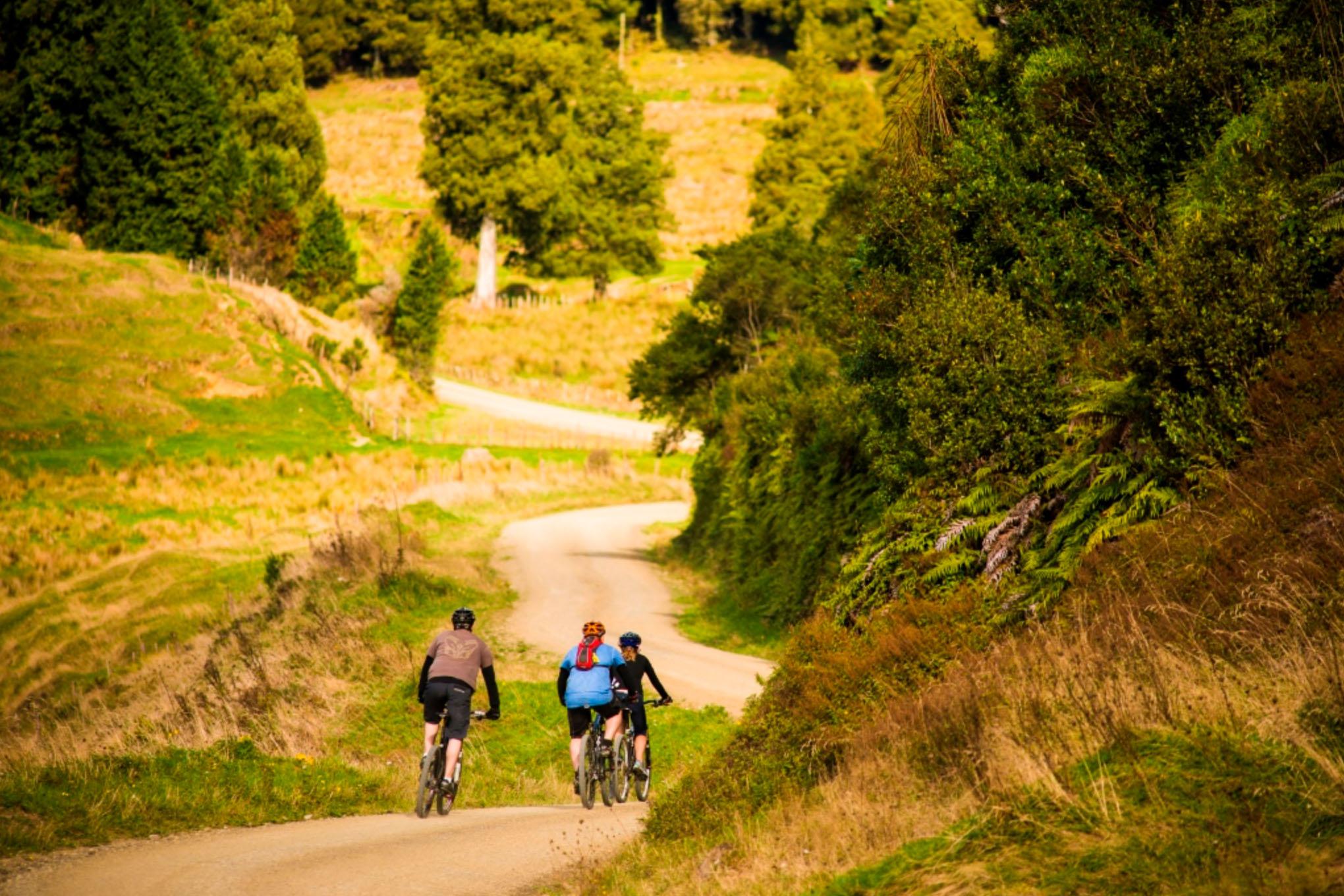 Motu Trails - 7.jpg