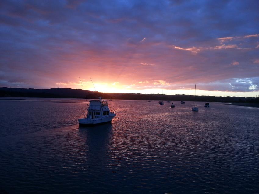 Ohiwa Harbour.jpg