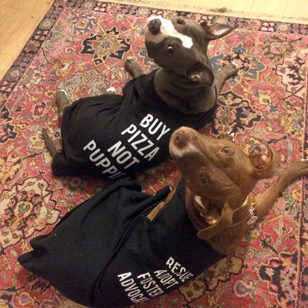 Modeling the Buy Pizza Not Puppies shirts we sell as a fundraiser!