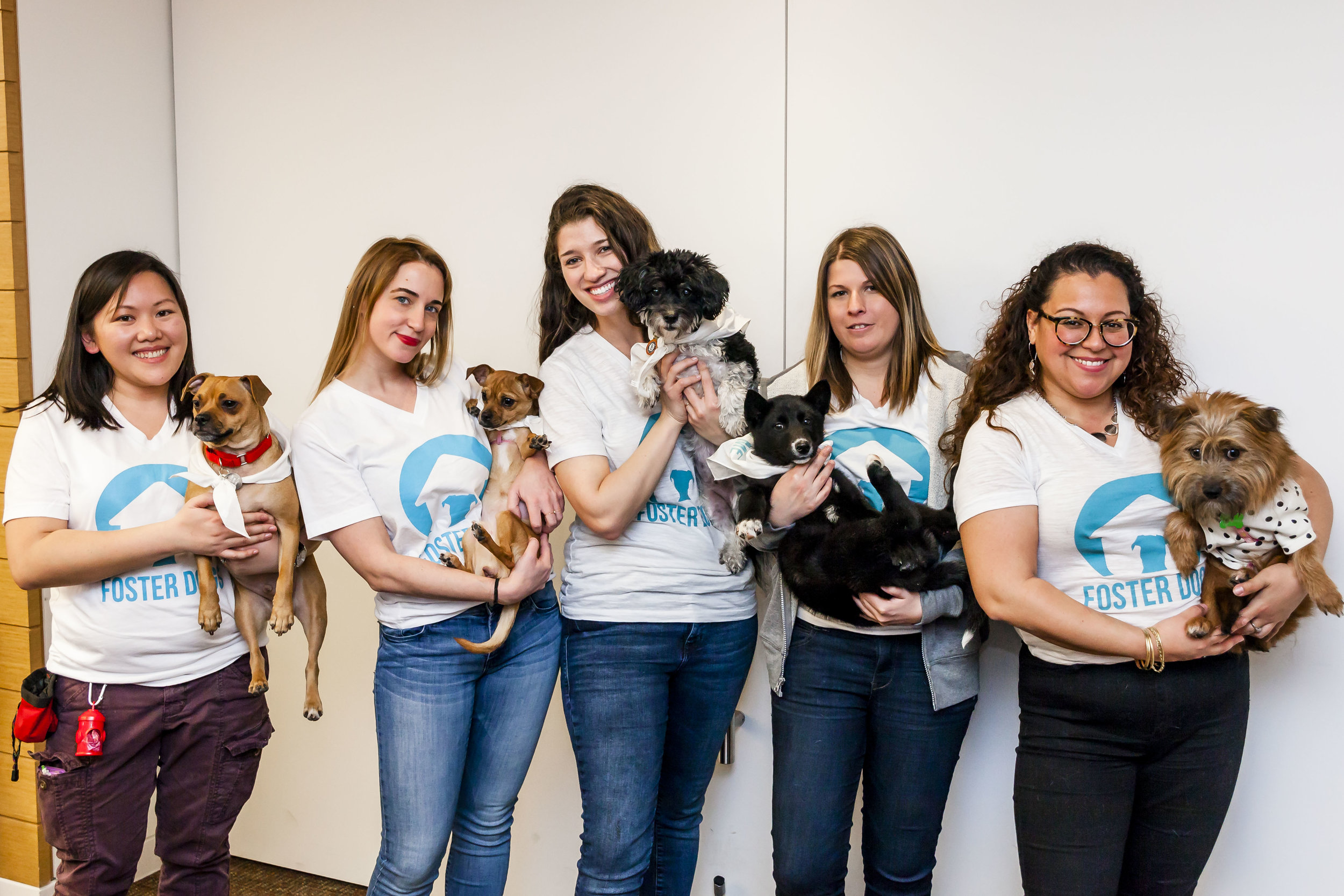 FosterDogs_DiscoveryPuppyParty_20180326_5272_©StaceyAxelrod.jpg
