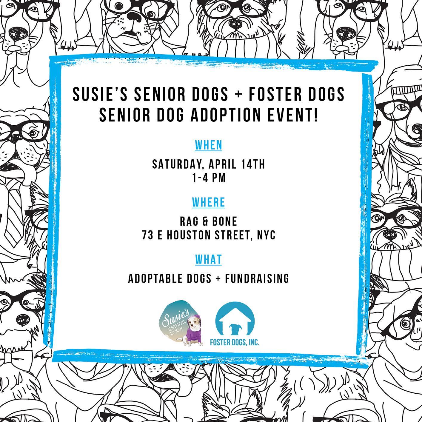 Senior Dog Adoption Event Flyer