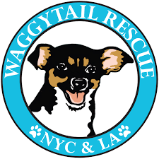 Waggytail Rescue