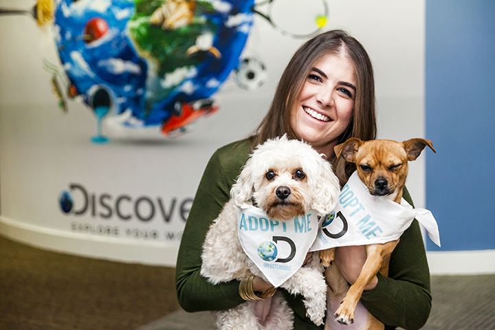 FosterDogs_DiscoveryPuppyParty_20180326_5243_(C)StaceyAxelrod.jpg