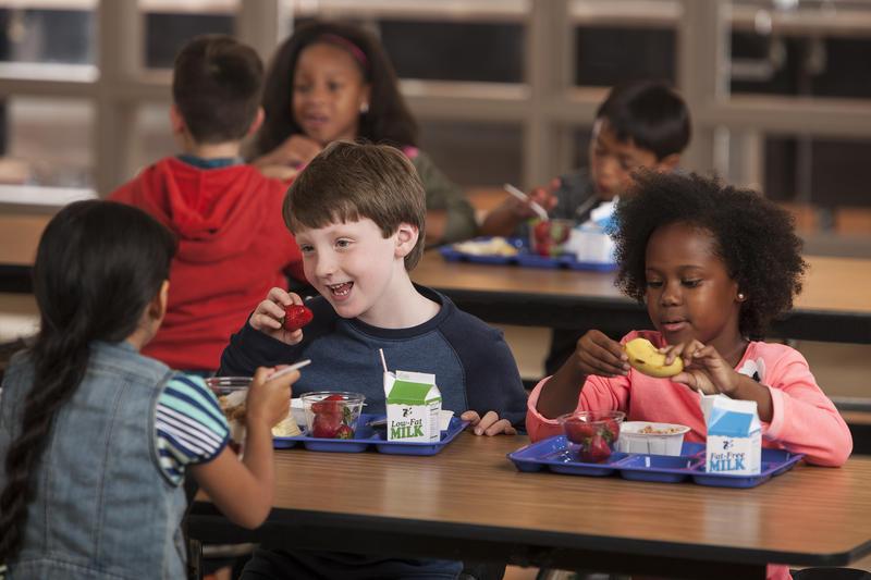 Kid having Lunch at School.jpg