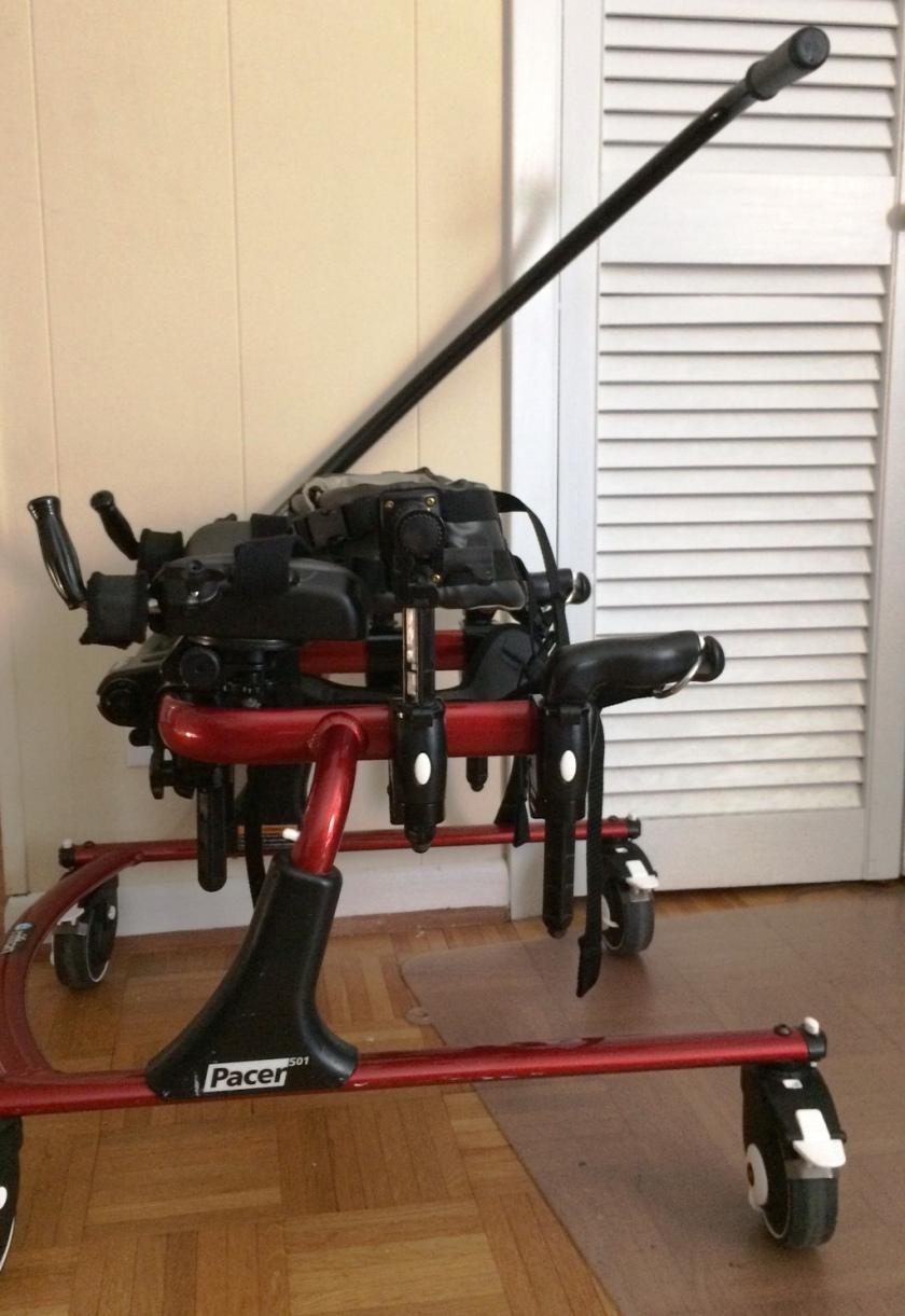 A Rifton Pacer gait trainer (even has a parent push bar) size 501: