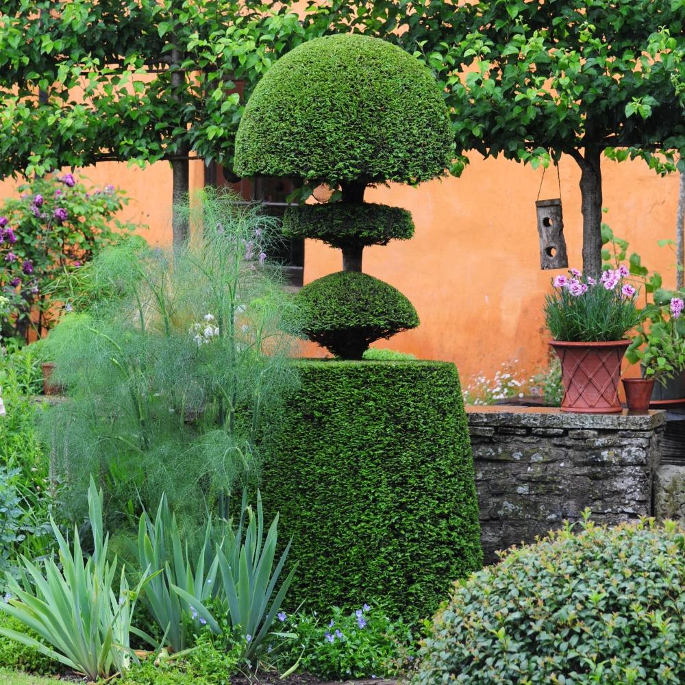 Alt-y-bela topiary Arthur Road Landscapes.jpg