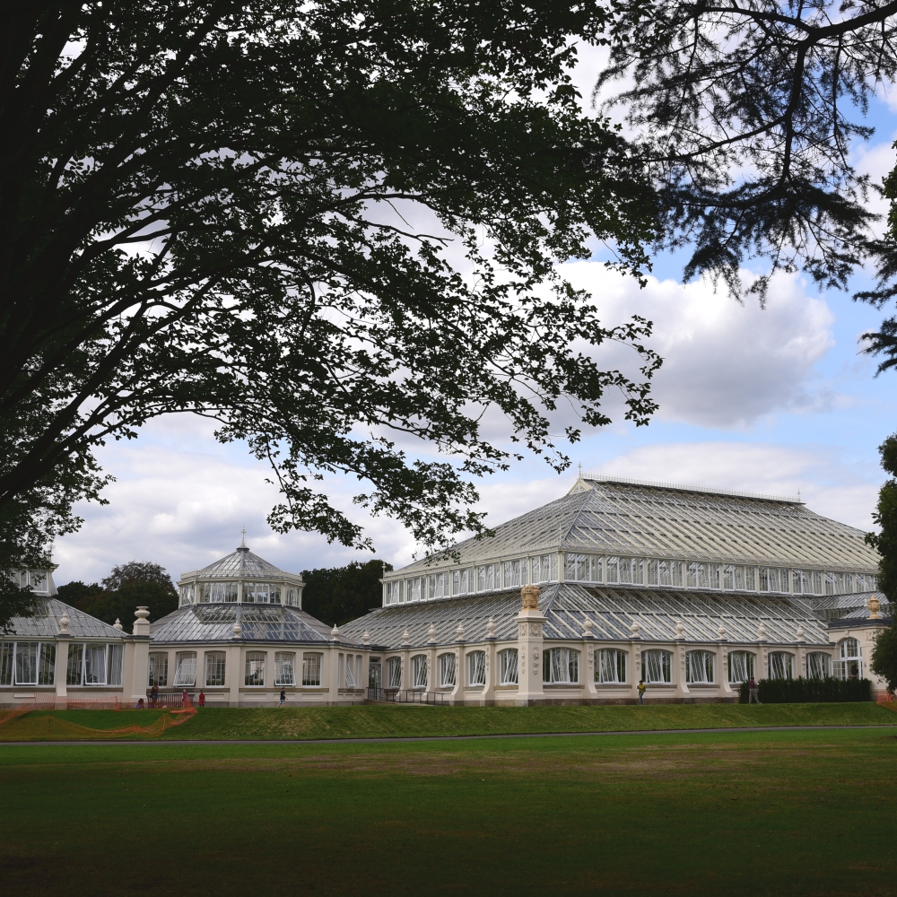 The Temperate House Kew  1 Arthur Road Landscapes.jpg