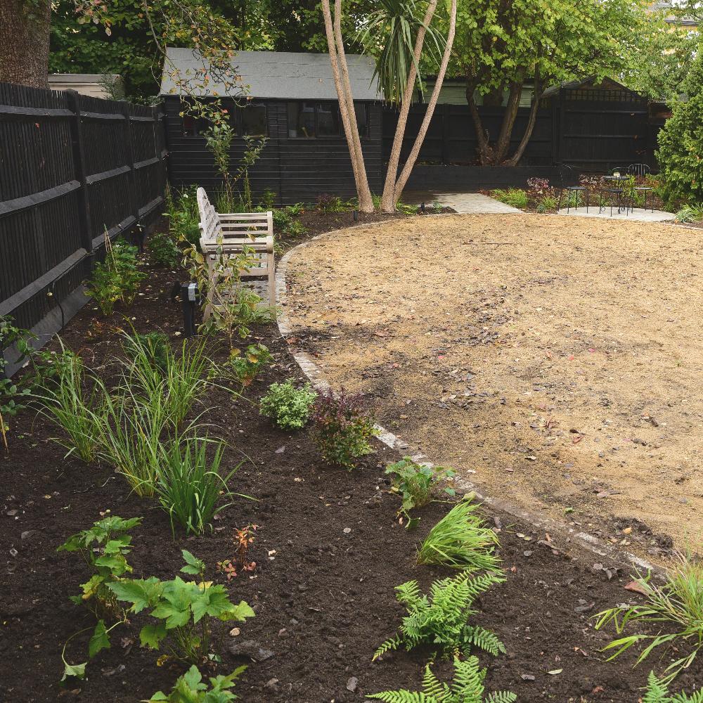 Wimbledon garden planting Arthur Road Landscapes.jpg