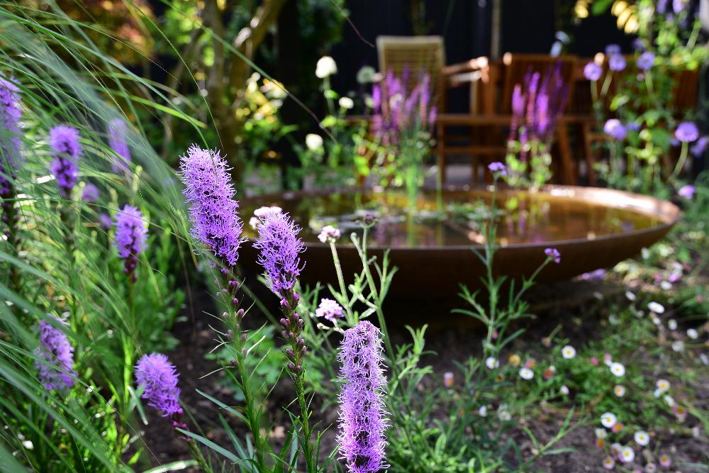 Tedding garden revamp 6 Arthur Road Landscapes.jpg