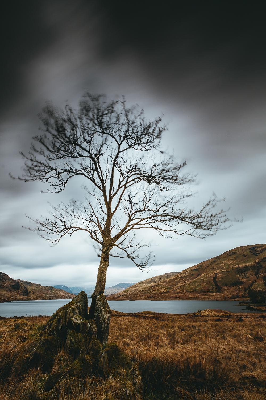 0009-scotland-beautiful-highland-20180501113027-ASE.jpg