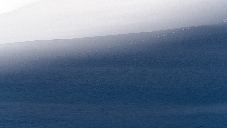 0003-randonnee-raquette-vanoise-savoie-20181212161648-compress.jpg