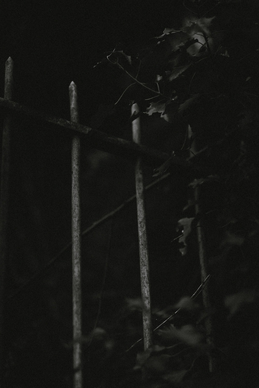 0019-savoie-seance photo-lac du bourget-20190310114614-compress.jpg