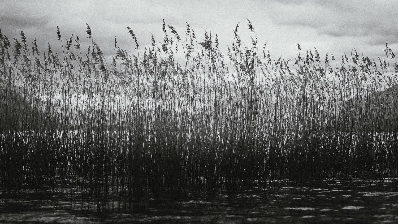 0036-savoie-seance photo-lac du bourget-20190310122536-compress.jpg