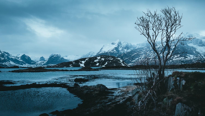 0023-hiver-norvege-20190228084424-compress.jpg