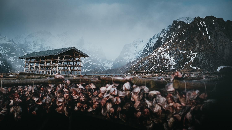 0038-hiver-norvege-20190228135010-compress.jpg
