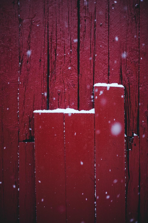 0085-hiver-norvege-20190301173052-compress.jpg