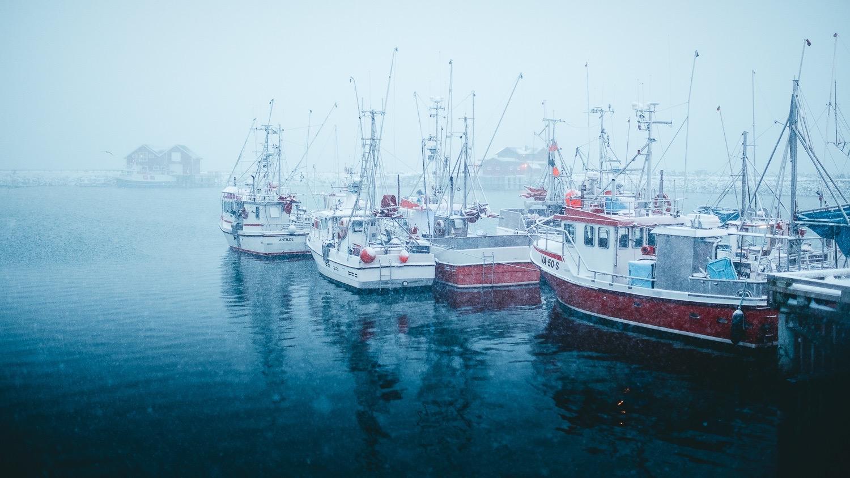 0086-hiver-norvege-20190301173814-compress.jpg