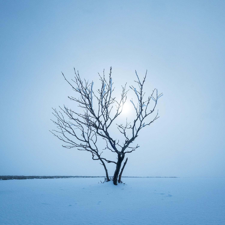 0001-vosges-paysage-nature-20190428165101-compress.jpg
