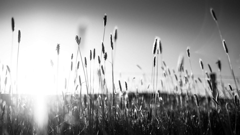 0002-scotland-tamron-le monde de la photo-paysage-20190506200033-compress.jpg