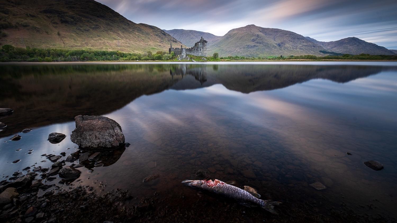 0112-scotland-tamron-le monde de la photo-paysage-20190512215150-compress.jpg