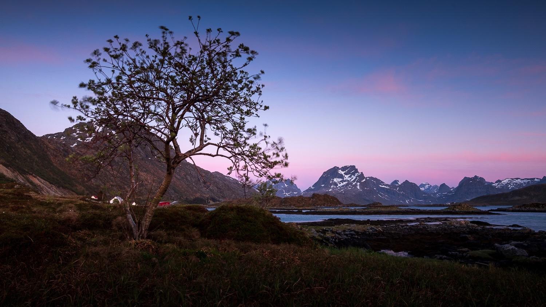 0026-soleil-minuit-norvege-20190523012406-compress.jpg