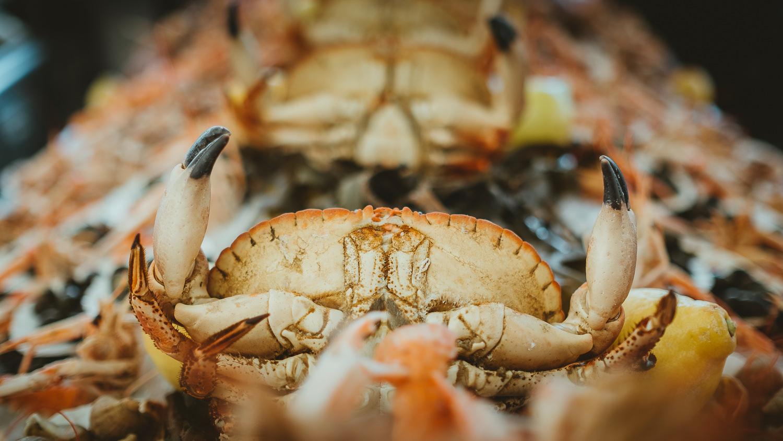 0019-restaurant-la grenouille-honfleur-20190717112531.jpg