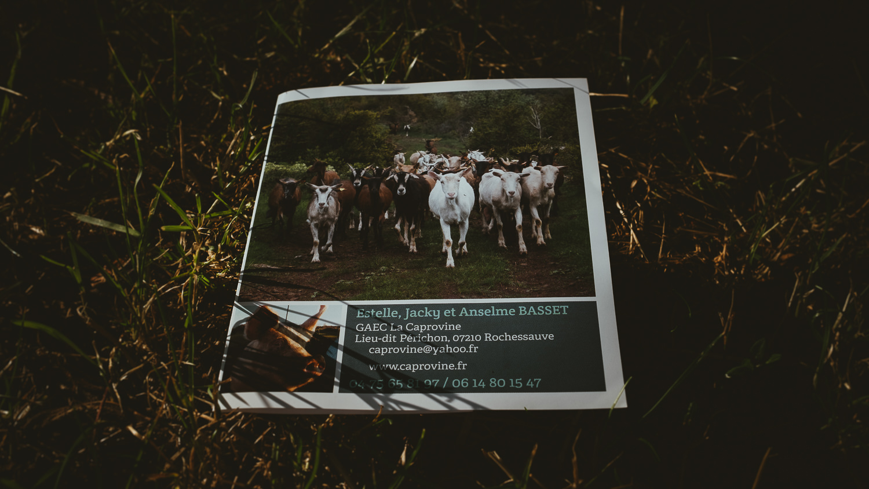 0001-reportage photo-ferme-fromage-la caprovine-20180814170852.jpg