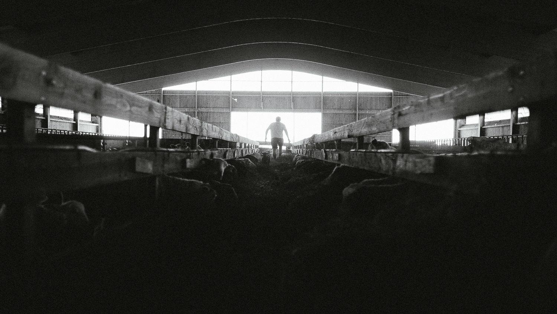 0052-reportage photo-ferme-fromage-la caprovine-20180819080644.jpg
