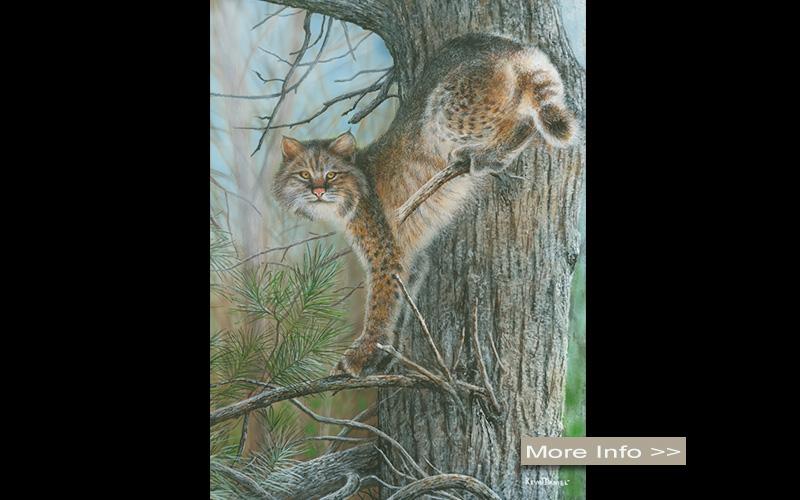 560-tangled-tree-bobcat-kevin-daniel-artist.jpg