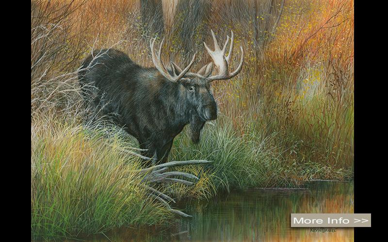 567-majestic-descent-moose-kevin-daniel-artist.jpg