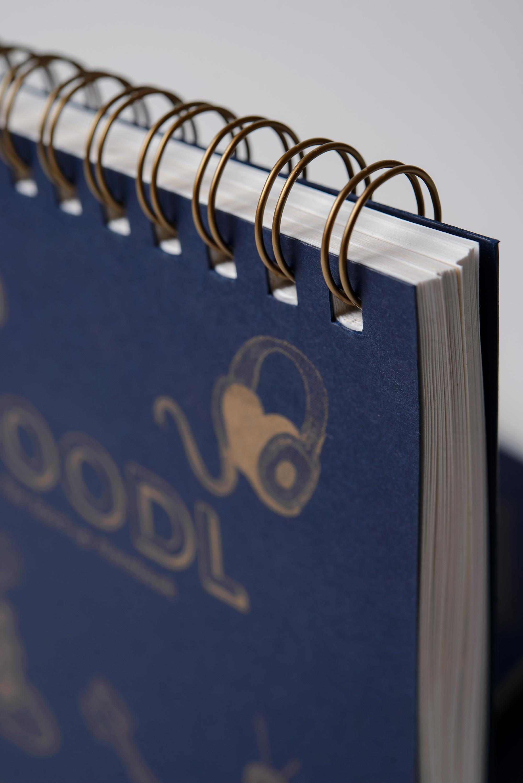 Doodl-Notebook-for-startups-RCF-31.jpg