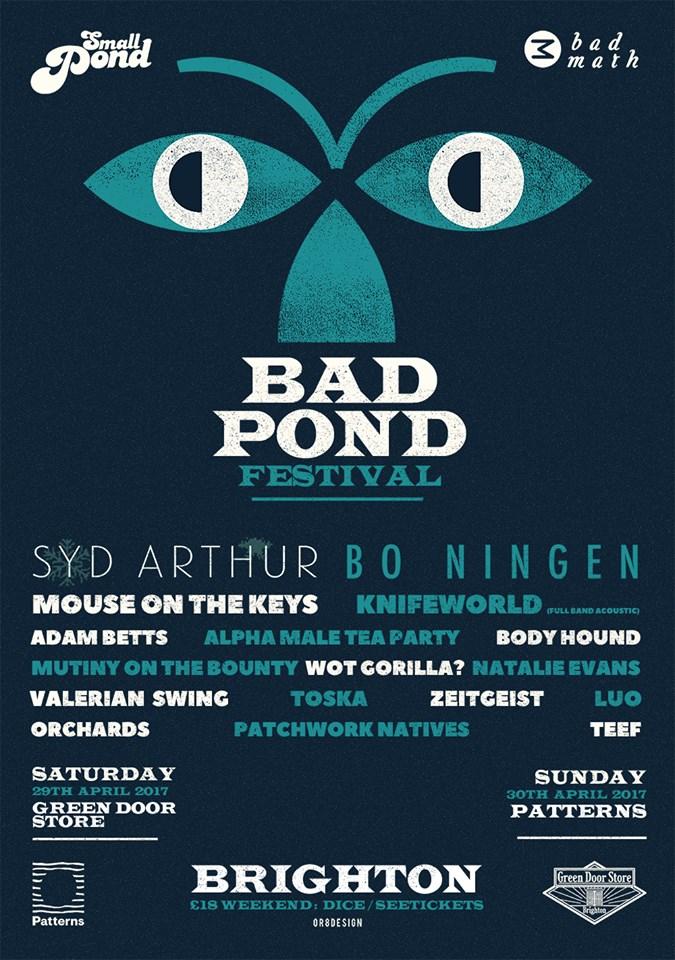 BAD POND 2017