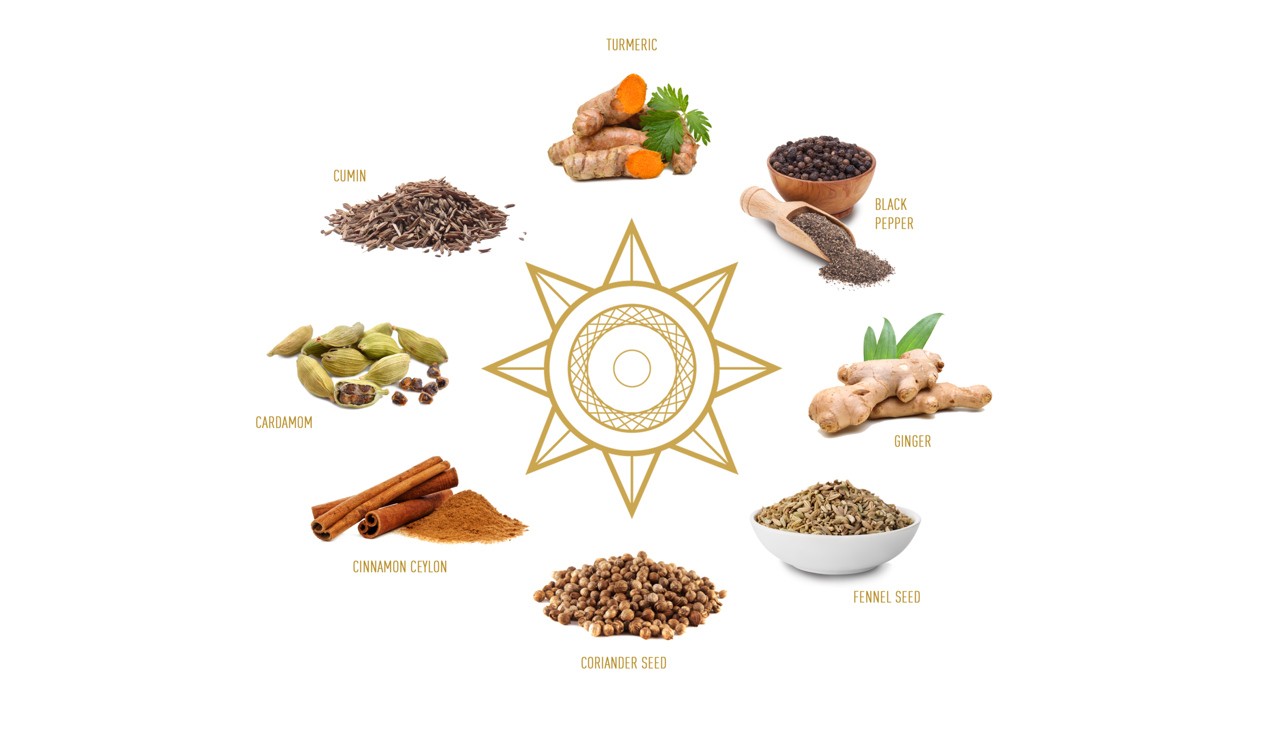 Gold Spice - Infographic.png