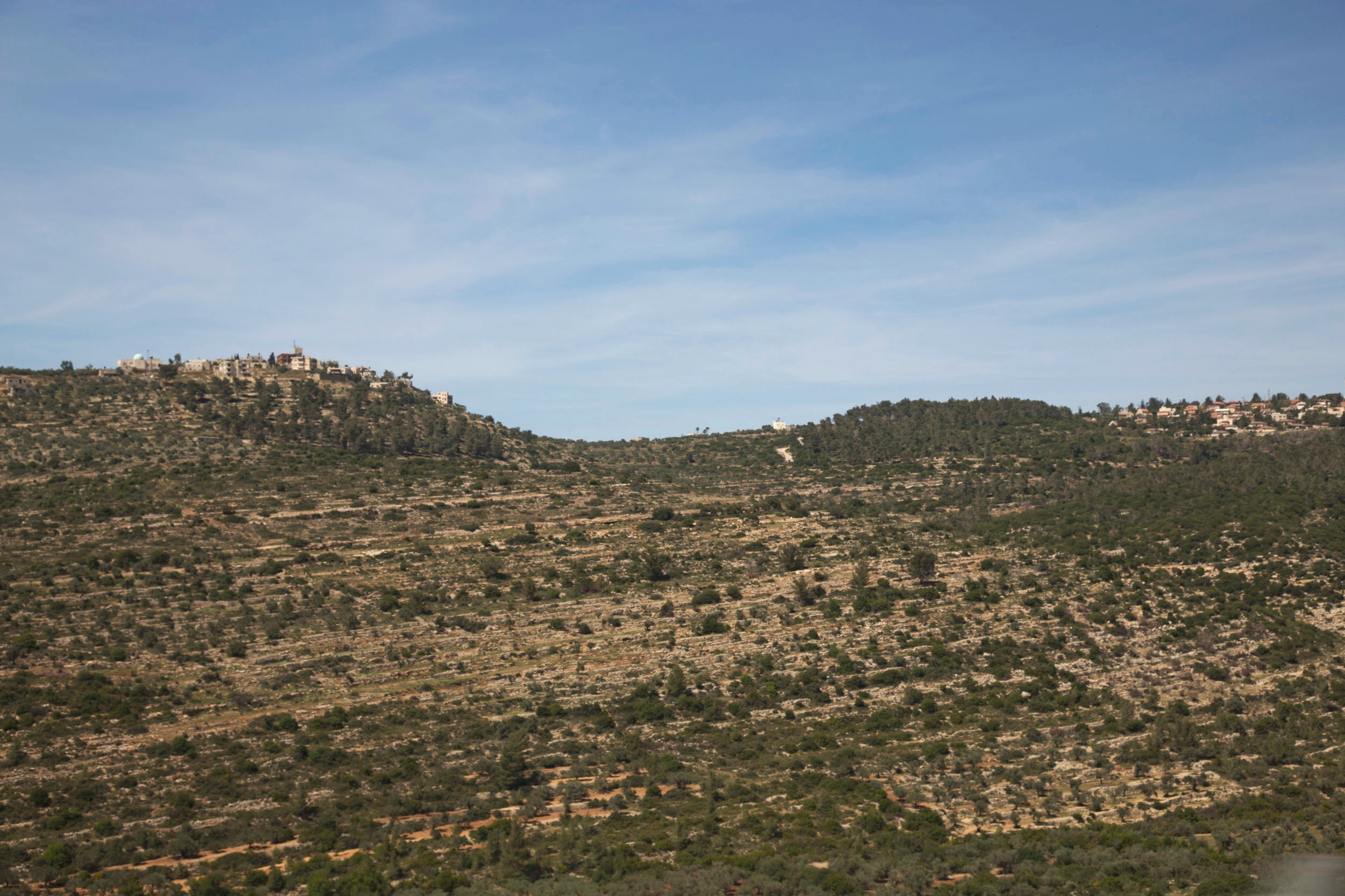 VisitPalestine_Visits_053.jpg