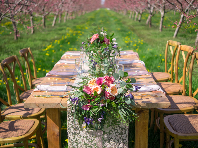 Josh_Bellingham_Photography_Niagara_Orchard_Wedding.jpg