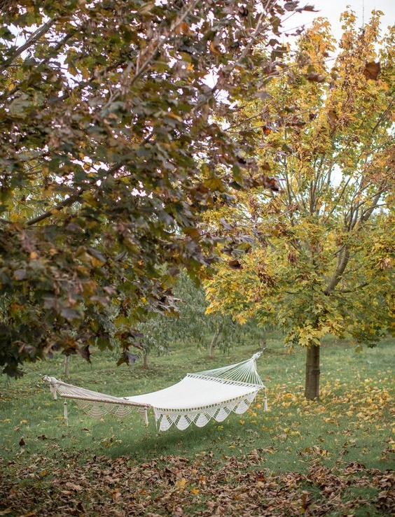 orchard croft hammock.jpg