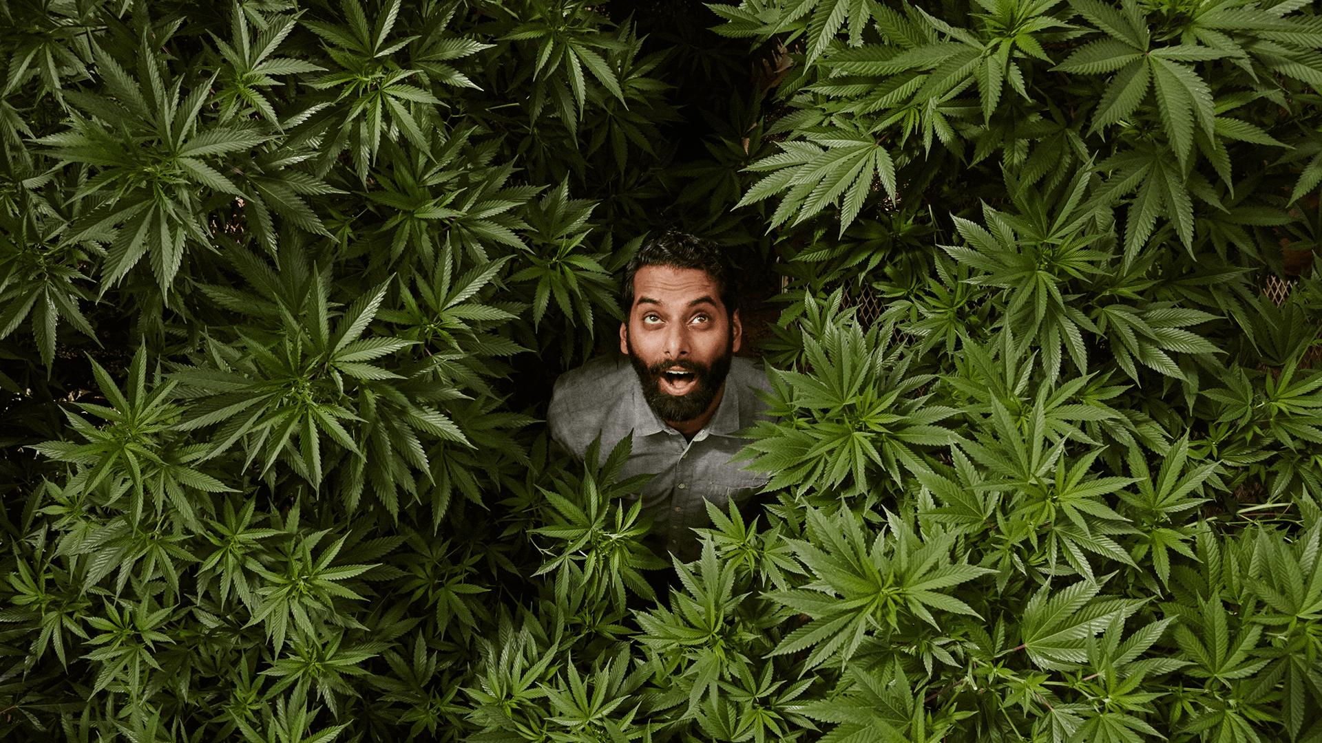 Viceland — I Smoke Weed