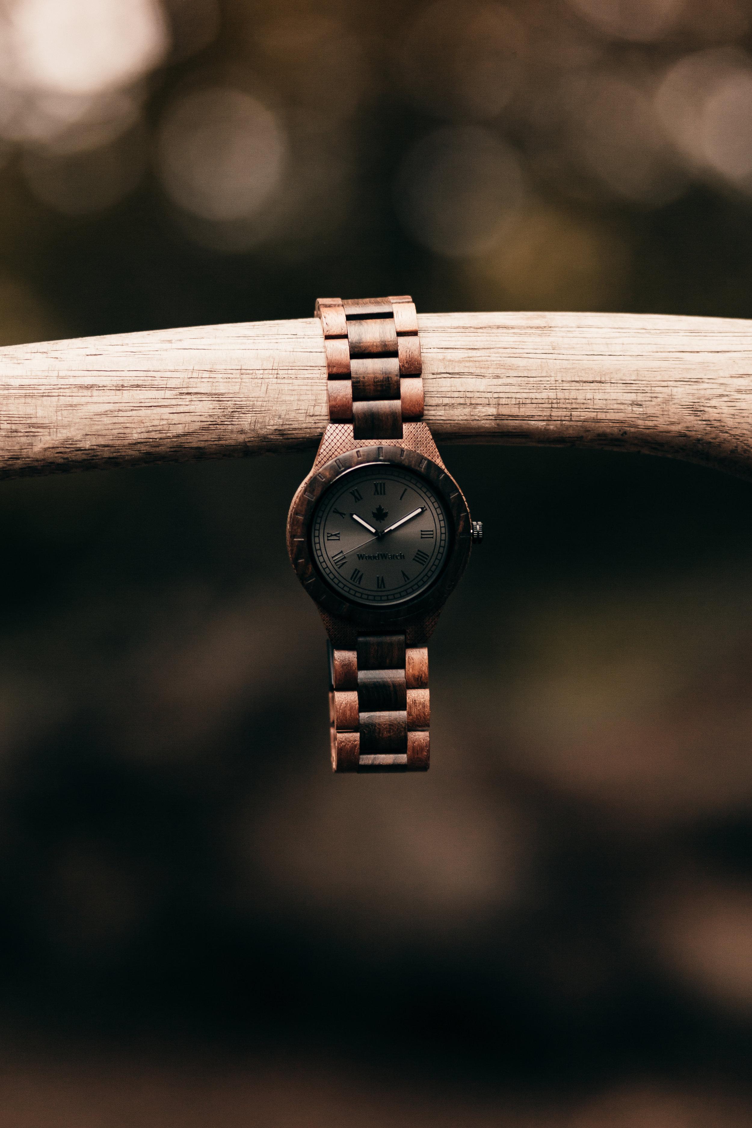 Woodwatch-13.jpg