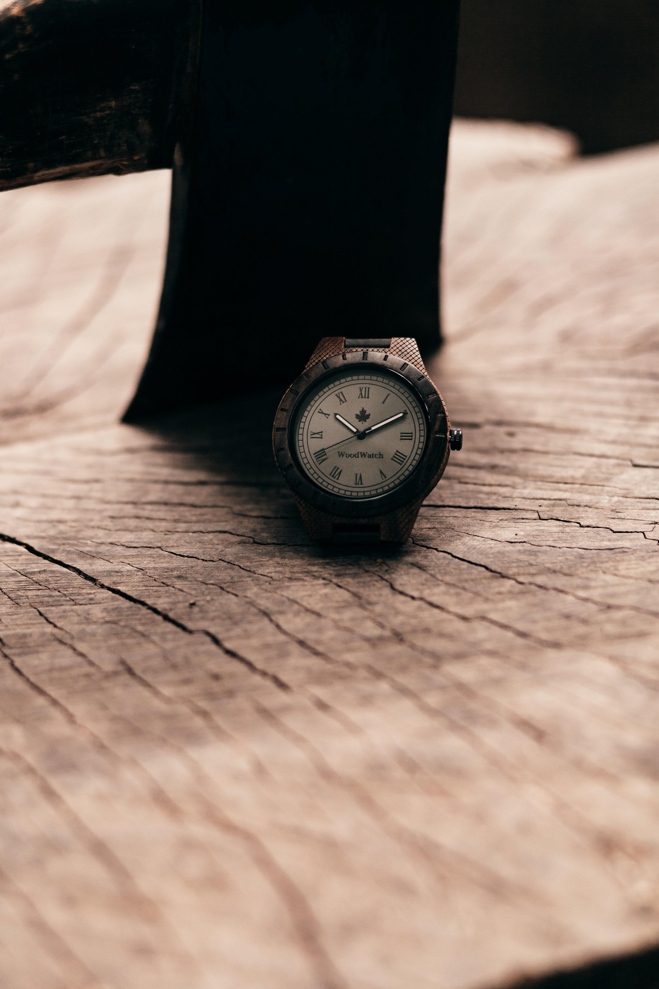 Woodwatch-12.jpg