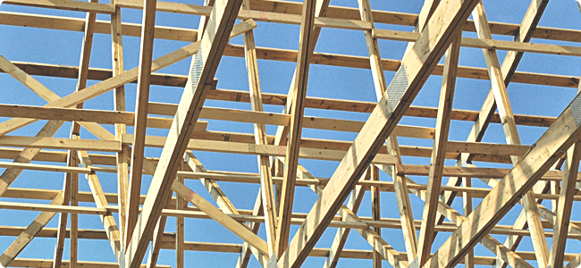 Trusses_Wide.png
