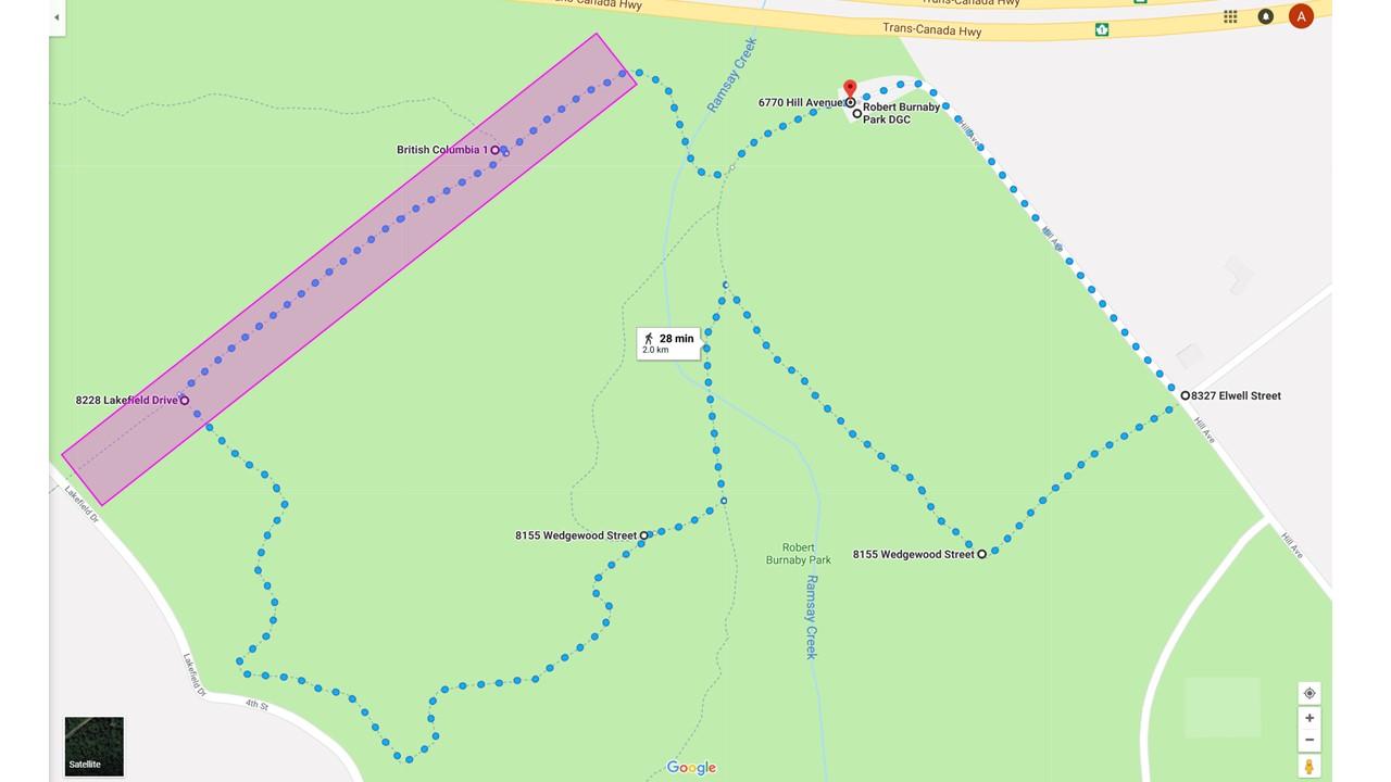 robert-burnaby-dog-walk.jpg