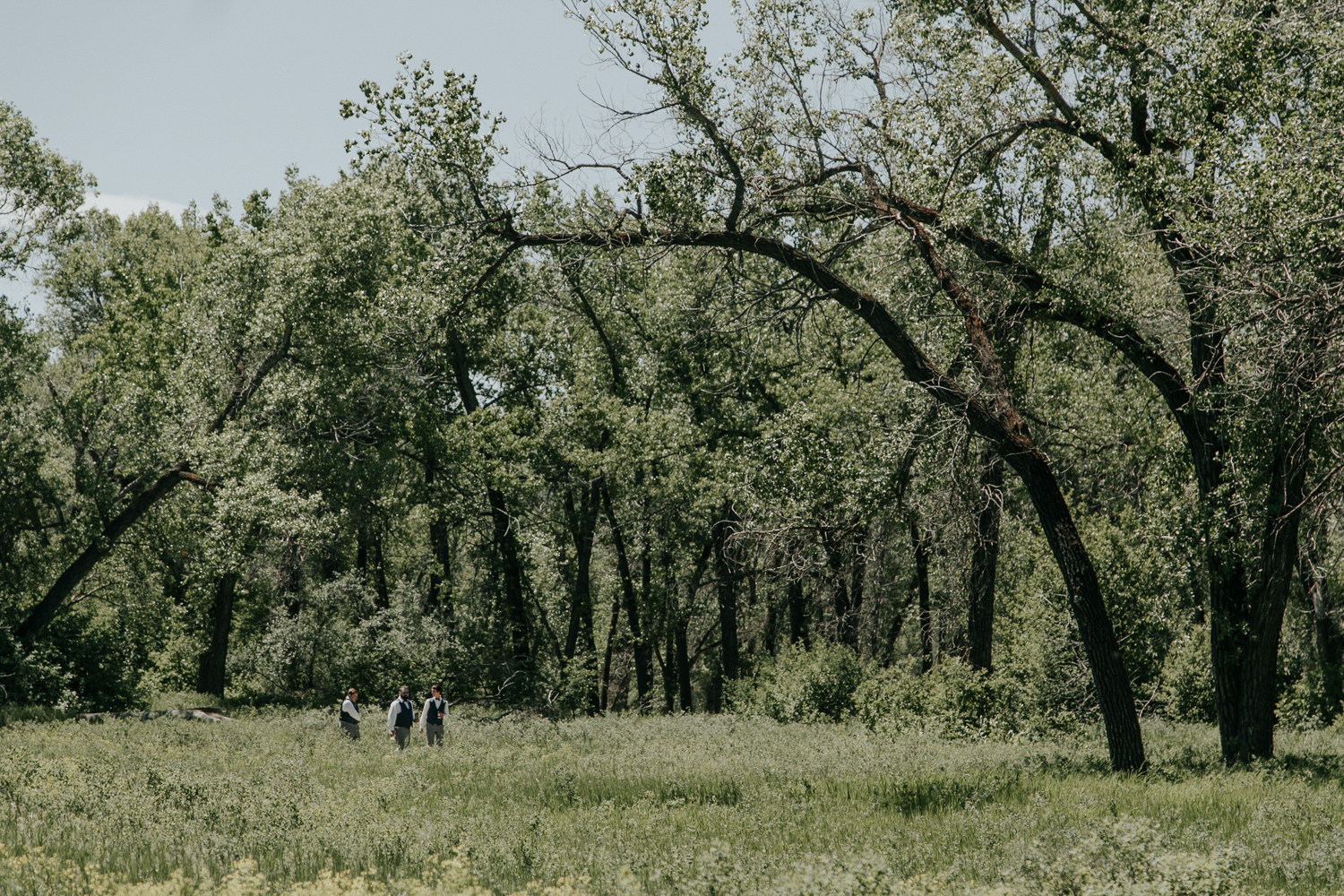 lethbridge-wedding-photographer-love-and-be-loved-photography-dan-tynnea-picture-image-photo-31.jpg