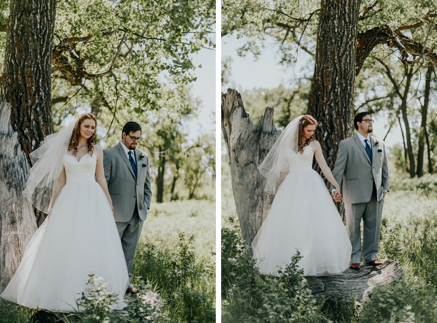 lethbridge-wedding-photographer-love-and-be-loved-photography-dan-tynnea-picture-image-photo-142.jpg