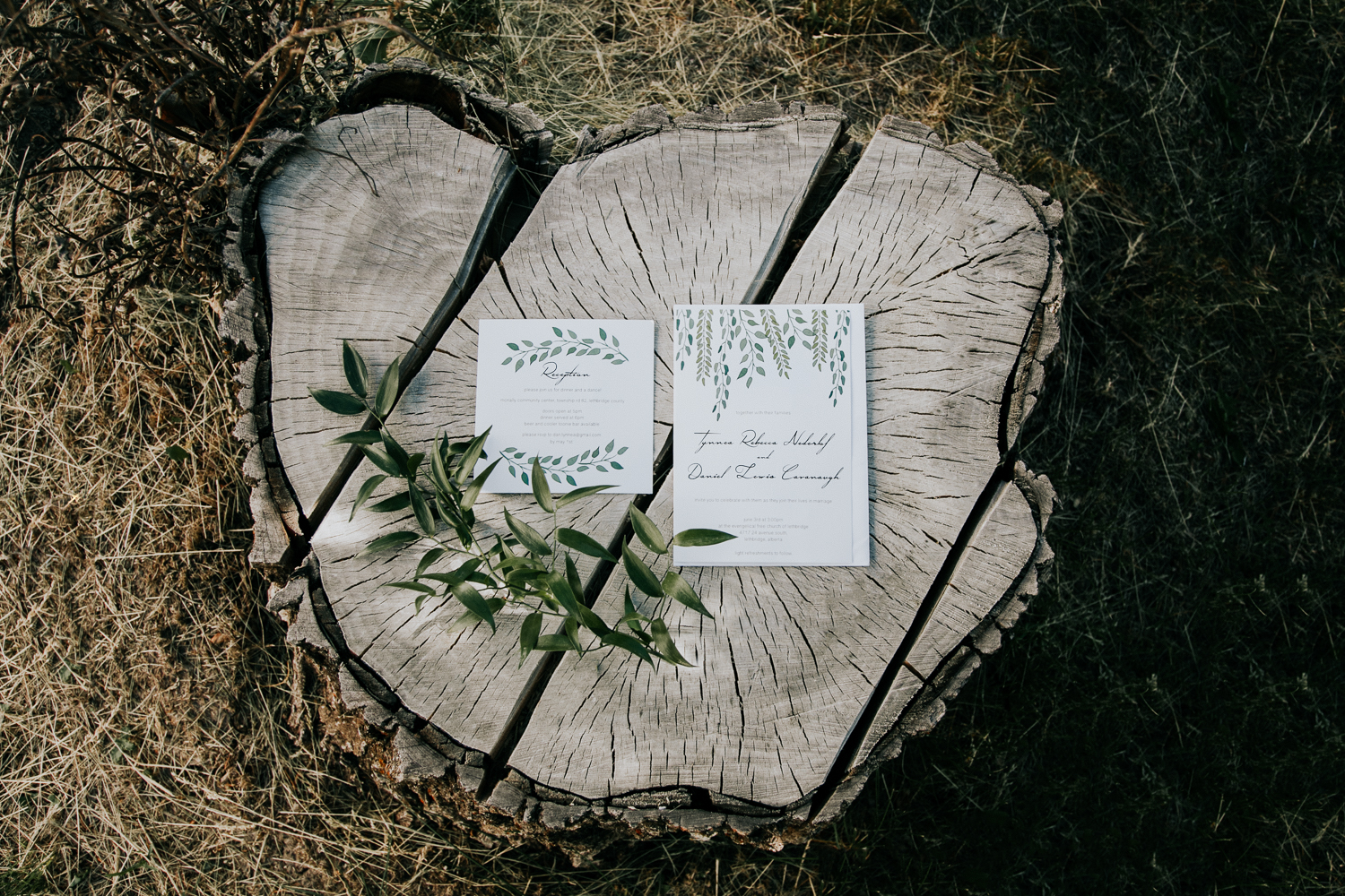 lethbridge-wedding-photographer-love-and-be-loved-photography-dan-tynnea-picture-image-photo-182.jpg