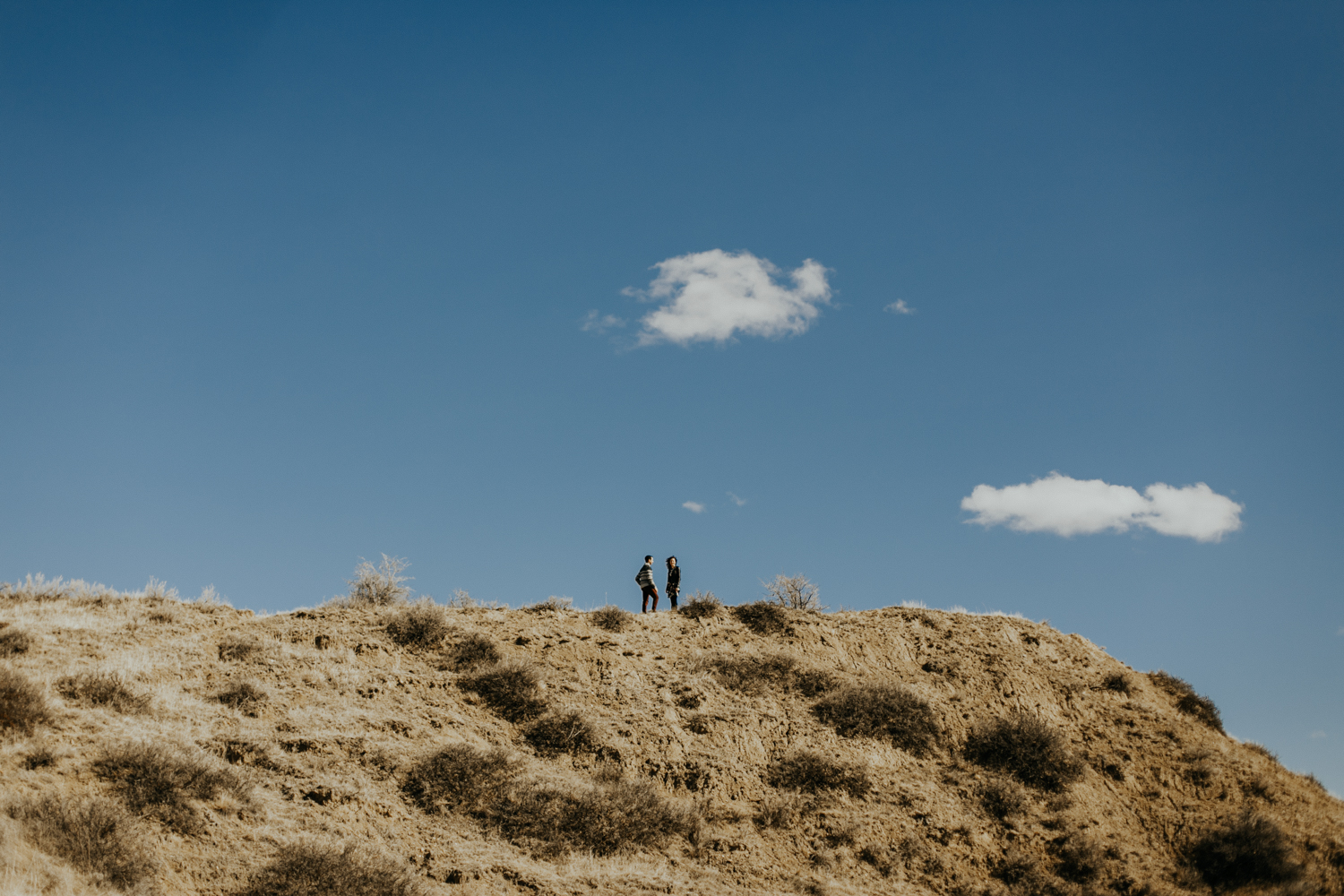 lethbridge-photographer-love-and-be-loved-photography-jodie-adam-coulee-hillside-engagement-photo-image-picture-15.jpg