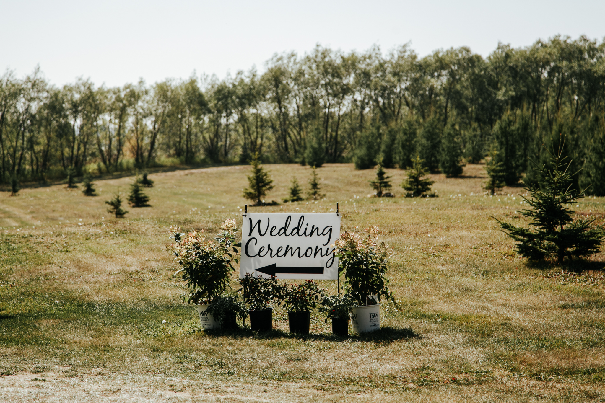 red-deer-wedding-photographer-love-and-be-loved-photography-emily-gab-photo-image-picture-54.jpg