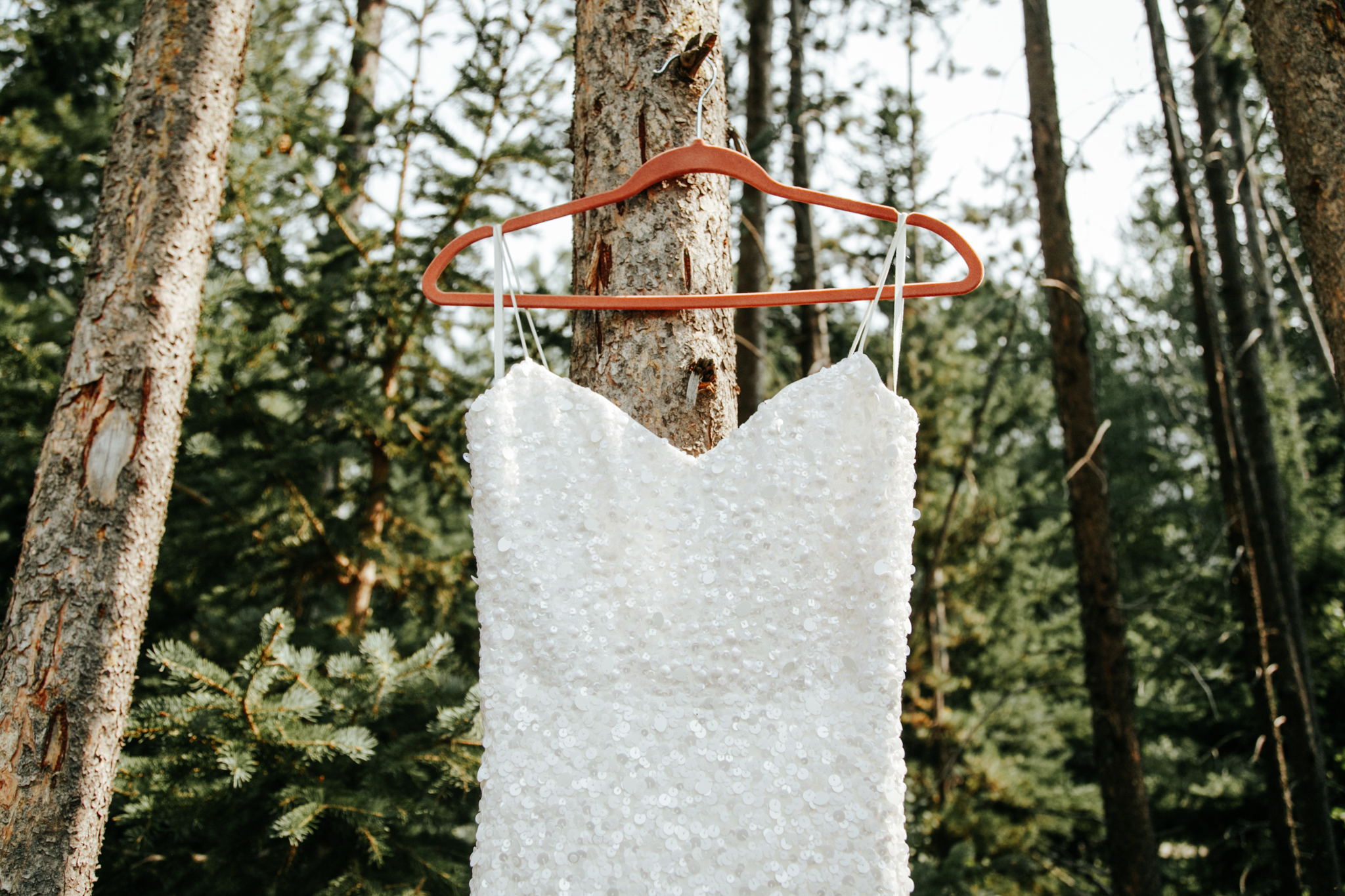 castle-mountain-wedding-photographer-love-and-be-loved-photography-lethbridge-pincher-creek-crowsnest-pass-yannick-rylee-photo-image-picture-2.jpg