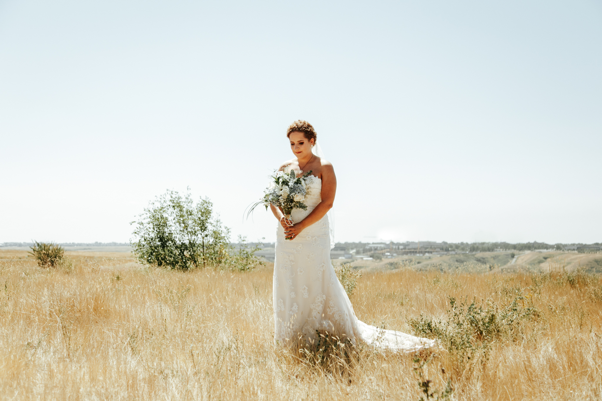 lethbridge-wedding-photographer-love-and-be-loved-photography-trent-danielle-galt-reception-picture-image-photo-87.jpg